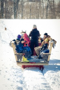 Family winter activity
