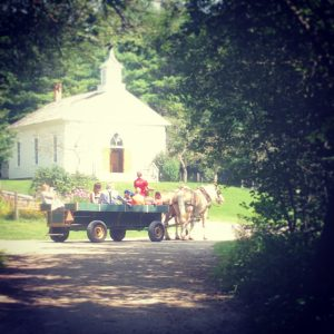 Horse drawn events