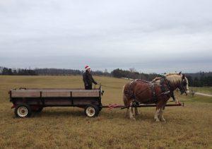 Corporate wagon rides