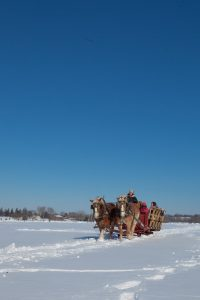Group sleigh ride