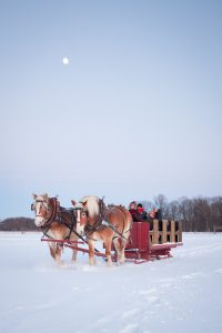 Valentines Day sleigh ride